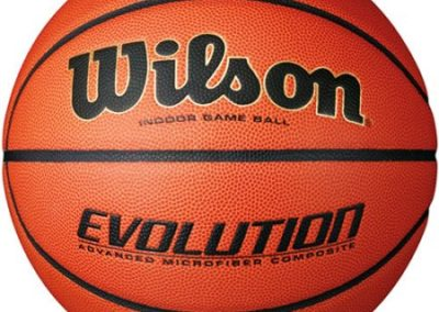 Wilson Evolution Basketball – as low as $49.95